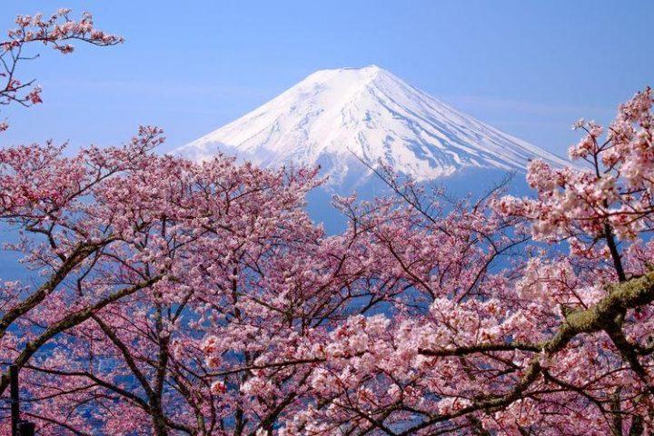 Simbol yang Populer dengan Kebudayaan Jepang